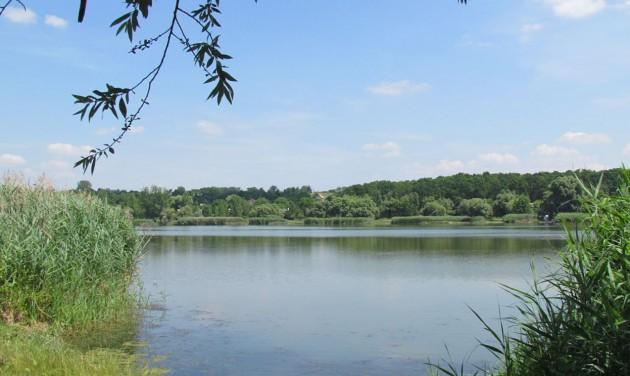 Látogatóközpont, madárles és tanösvény a palotási tónál