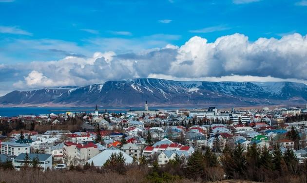 Pálmafák Reykjavíkban