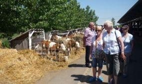 Debrecennel és térségével ismerkedtek walesi mezőgazdasági szakemberek