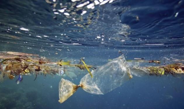 Horvát segítséggel tisztítják az albán tengerpartot