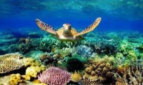 Kifizetődő a természeti kincsek védelme