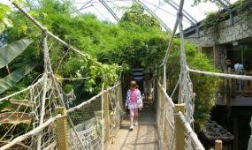 Újabb fejlesztés a Nyíregyházi Állatparkban