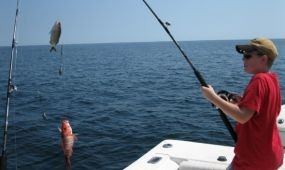 Ujhelyi halászattal kapcsolatos turisztikai jelentését tárgyalta az EP szakbizottsága