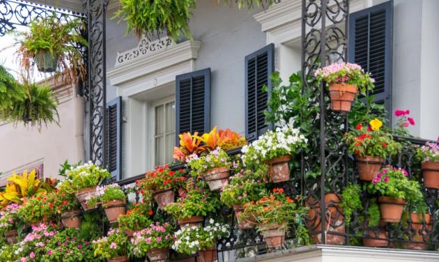 Július 15-ig lehet nevezni a Virágos balkonok, virágos kertek versenyre