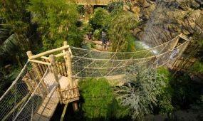 Európa legjobb állatkertje lett saját kategóriájában a Nyíregyházi Állatpark
