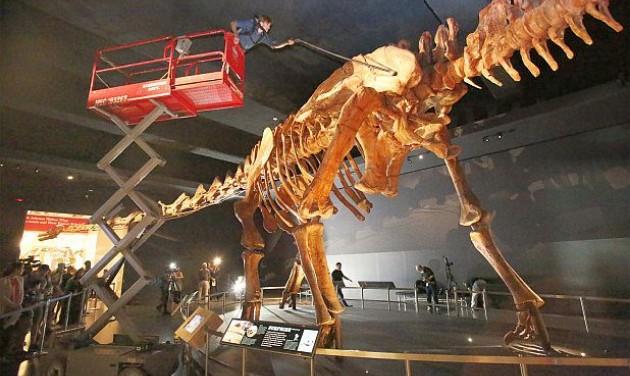 Nyilvános dinófürdetés Manhattanben