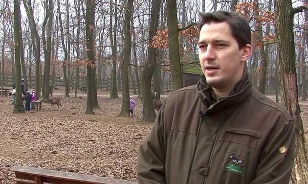 Turizmus.com rádió: interjú a Budakeszi Vadaspark igazgatójával