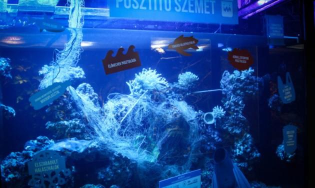 Szemetes akváriummal sokkol a Pécsi Állatkert