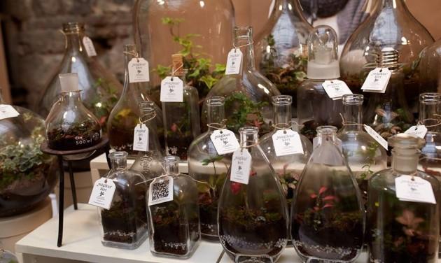 Kiskertpiac és zöld szerelem