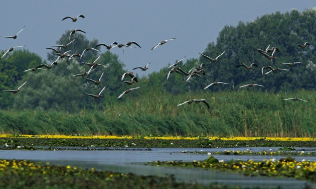 36 milliárd a Debrecen-Hajdúszoboszló, Hortobágy, Tisza-tó kiemelt térségnek