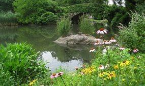 Újranyitják a Central Park titkos oázisát