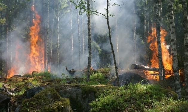 Külügyi figyelmeztetés a horvátországi tüzek miatt