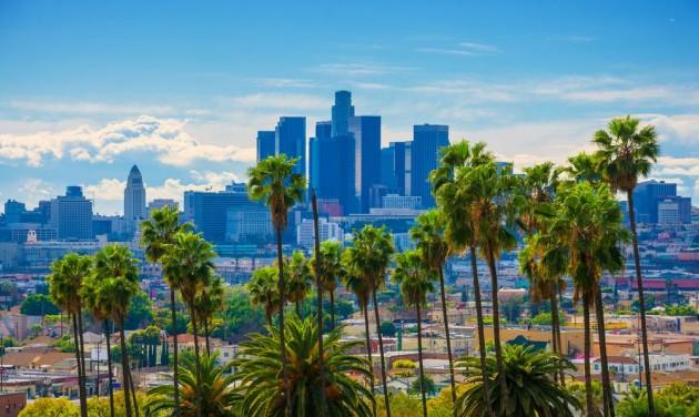 Kicserélik a Los Angeles-i pálmafákat