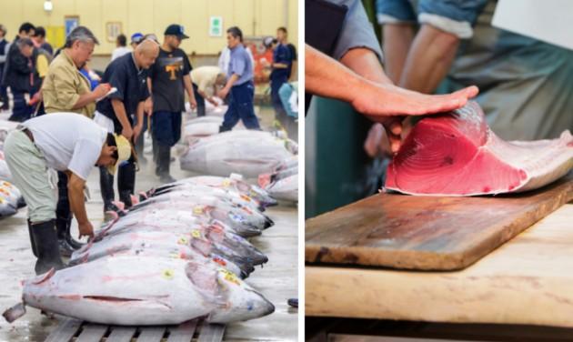 Felújítják a világ leghíresebb halpiacát