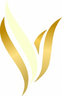 Gyakorlott és pályakezdő recepciós, Vitta Hotel Superior
