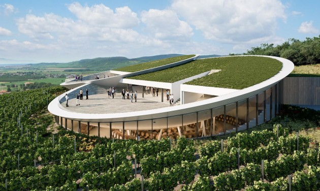 Óriáskorongokat épít a szőlők közé a Sauska Borászat