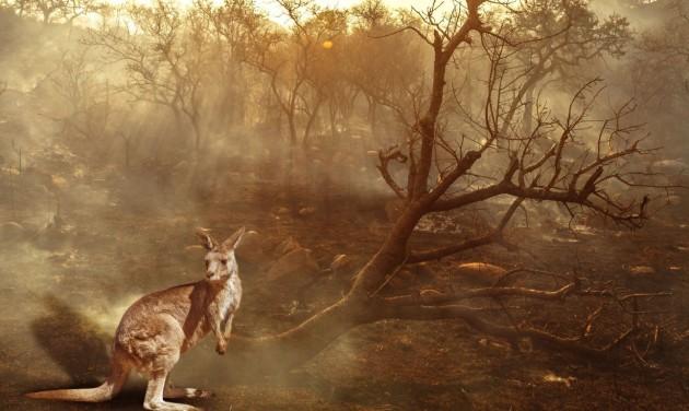A turizmus húzhatja ki Ausztráliát a bajból
