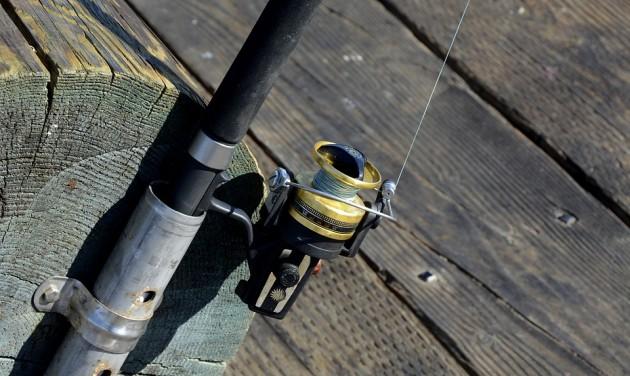 Egyre többen horgásznak a Tisza-tónál