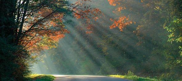 A nemzeti parkok fejlesztését támogató uniós pályázat jelent meg