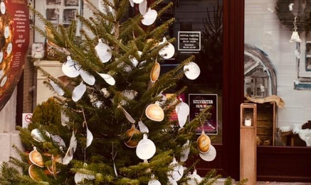 Kívánságokat teljesít a pápai N-Tours karácsonyfája