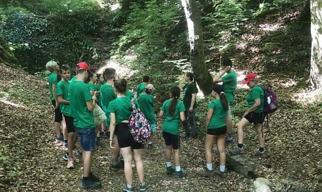 Vándorló diákok és erdők nyomában a Mecsekben