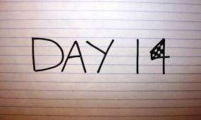 Mi fér bele 14 napba?