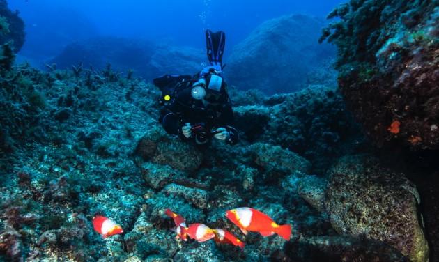 Málta támogatja a búvárkodni érkező turistákat
