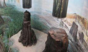 Miskolci múzeum Európa legjobbjai között