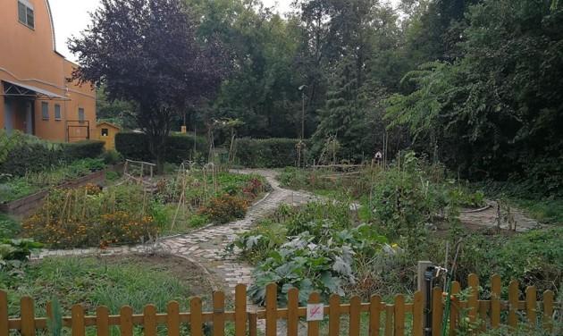 Díjat kapott az ibis Budapest Citysouth közösségi kertje