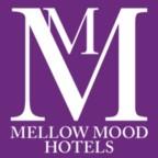 Recepciós, Mellow Mood Hotels