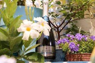 Tavaszi pezsgés a Balatonnál