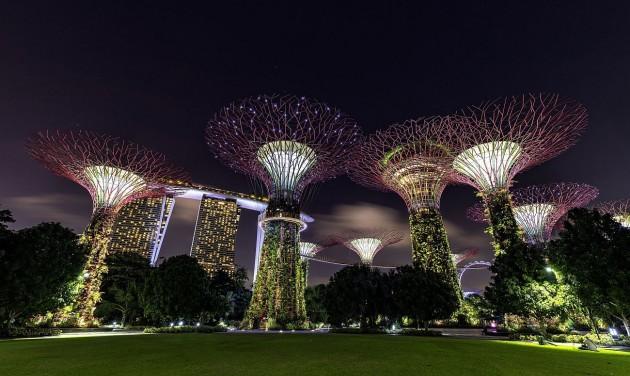 Koktélozz egy szuperfa tetején Szingapúrban!