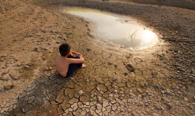 WWF: sorsdöntő a következő két év az emberiség számára