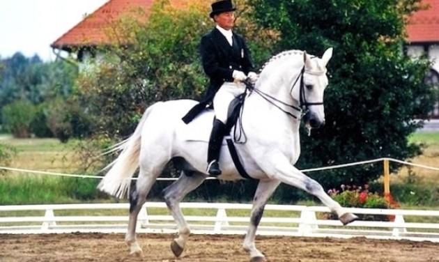 Miniszteri biztost kapott a Kincsem lovas program