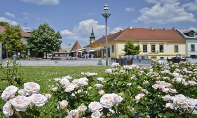 25 érdekesség a Virágos Magyarország környezetszépítő versenyről