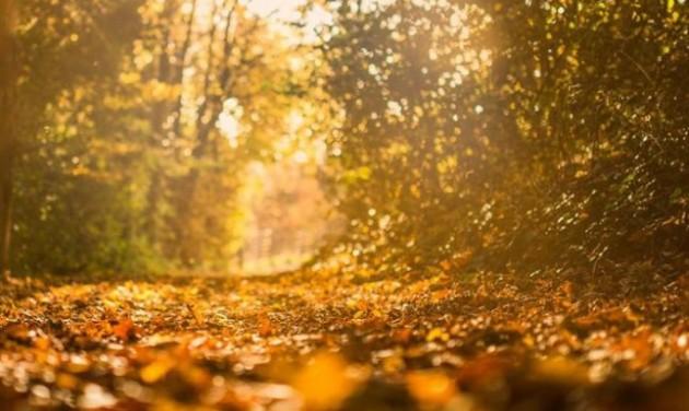 Kiemelkedően nőtt a belföldi turizmus októberben