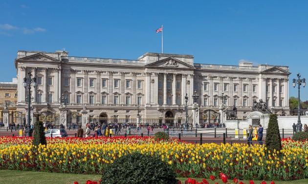 Királyi udvar turisztikai igazgatót keres