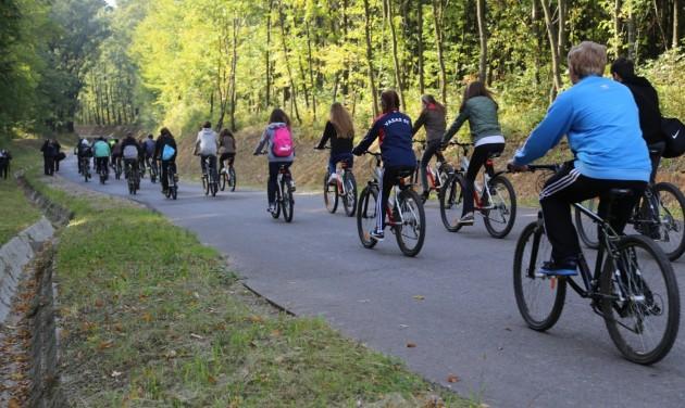 Kerékpárút szeli át a Zselicet