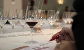 Magyarország volt a díszvendég egy franciaországi borversenyen