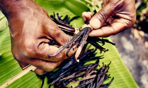 Vanília-szigetek: összefogással a turistákért