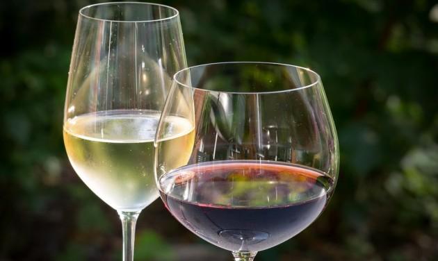 Bemutatták Debrecen idei borait