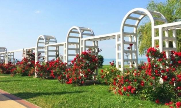 Megújul a Rózsakert és a kikötő környezete Siófokon