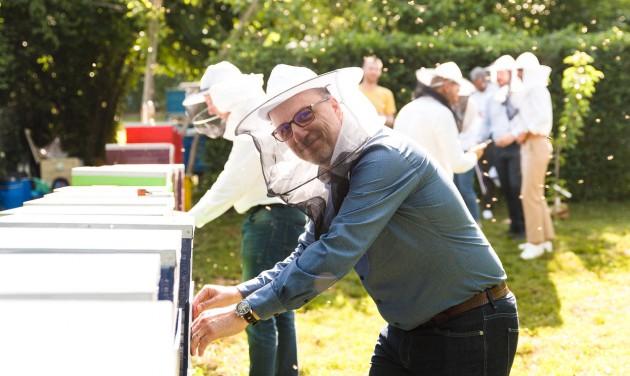 Egymillió méhnek adnak otthont az Accor/Orbis Magyarország szállodái