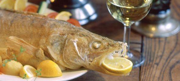 Kitalálták, hogyan kerülhet balatoni hal a balatoni éttermekbe