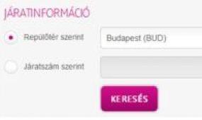 Valós idejű járatinformáció a Wizz Air honlapján