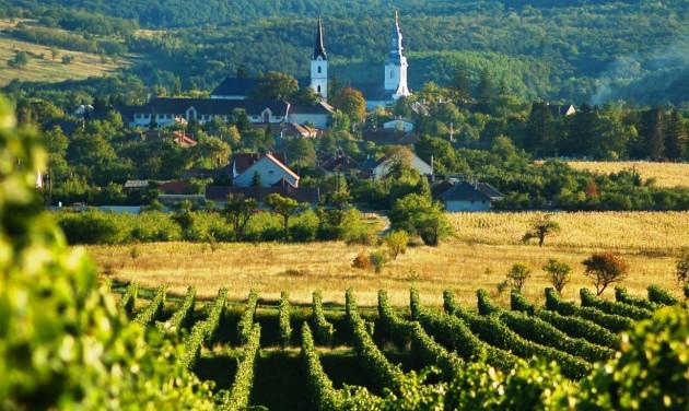 Csodás Magyarország: Tokaj-hegyalja több mint bor