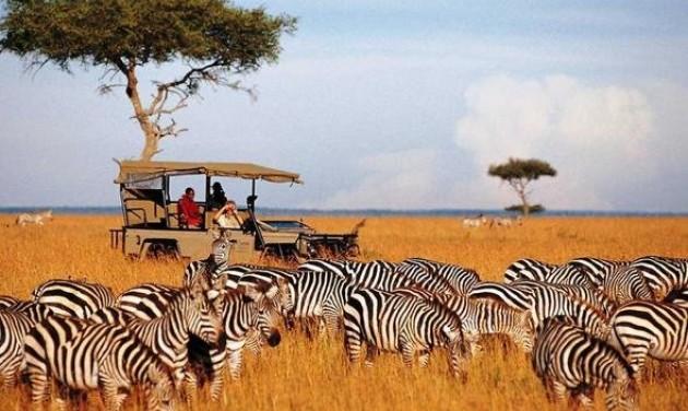 Safari a kenyai Jetways-zel