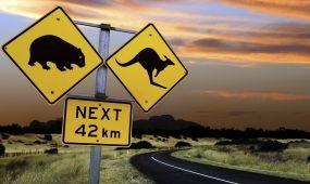 Munkavállaló turisták Ausztráliában