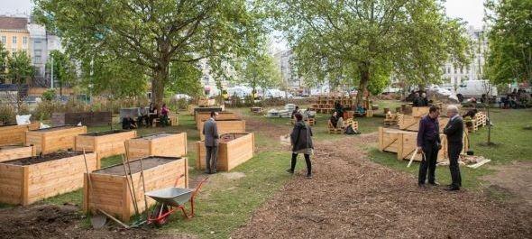 Közösségi kert a bécsi Karlsplatzon