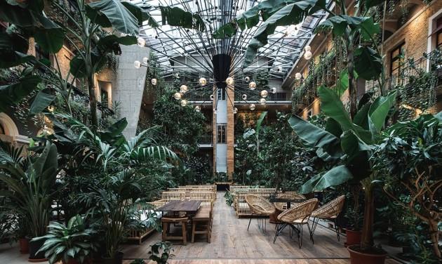 Őserdei környezetben lazulhatunk Budapest új közösségi terében